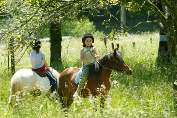 balade poney cheval centre de vacances séjours ferme Tarn Alban