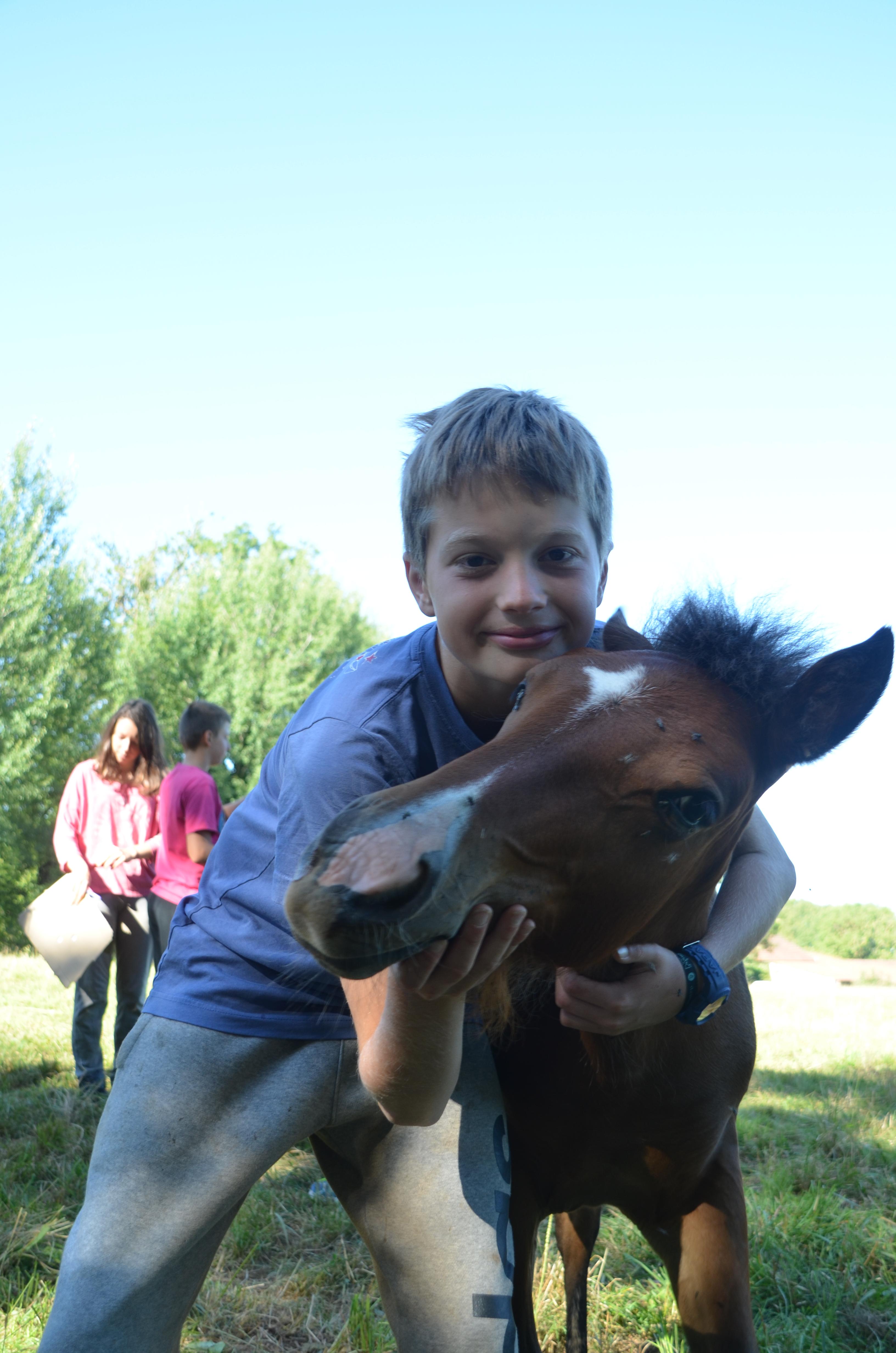 colonies de vacances cheval et poney et ferme